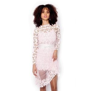 Pastel Pink lace & tulle pencil long dress